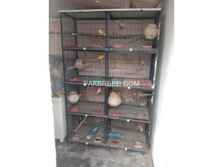 Spot welding angle patti 8 portion cage for salr